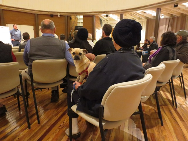 Nov Meeting- Canine resident