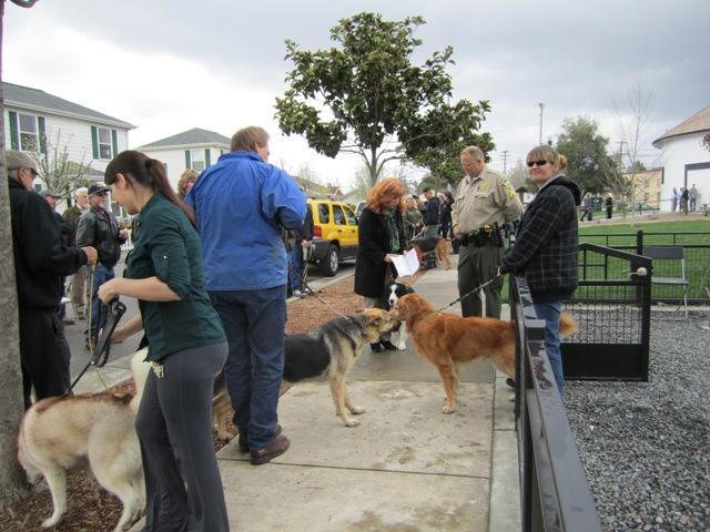 Gary\'s dog Mary meets the W. E.\'s Peja.