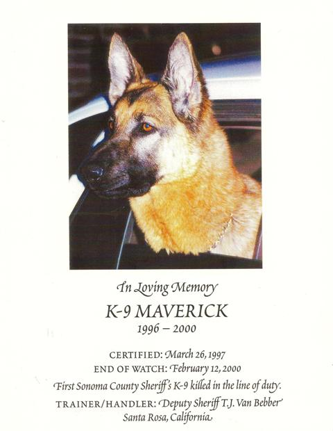 K9 Maverick- a very special dog who is remembered