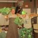 Arbor Day Program