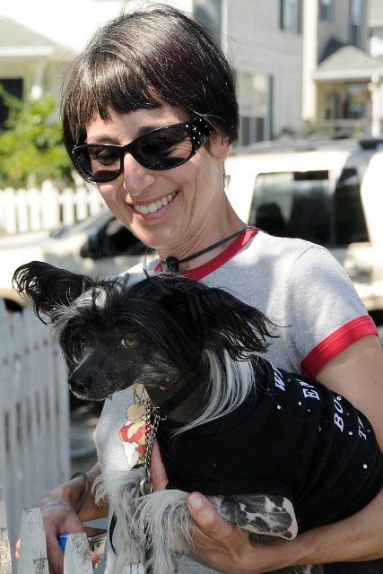 Pug Sunday May 09 by Lisa Howard