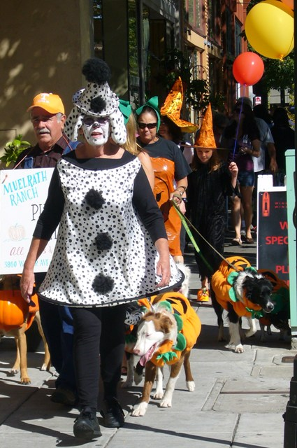 Railroad SCARE- Scaredy Dog Parade