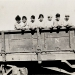 Ca Packing Workers pose in rail car- Hall Collection
