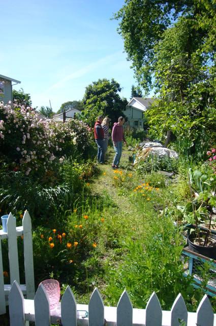 Gina shares extra plants with neighbors