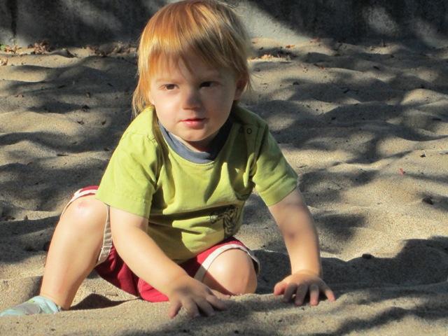 Leo enjoys the playground