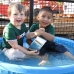 Remy & Antonio play in the Dog park swimming pool