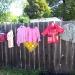 An artfully displayed yard sale photo by Maggie O\'Brien
