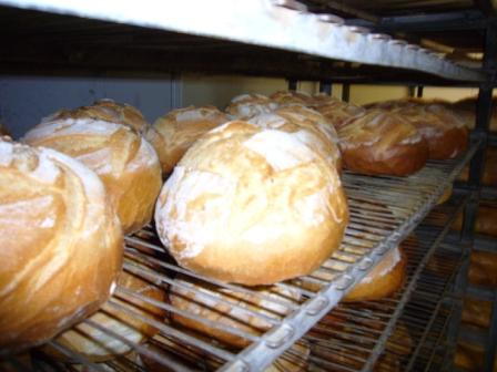 Fresh Franco American bread