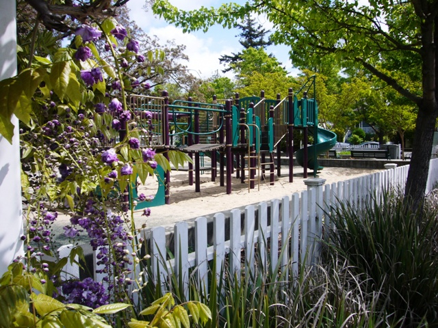 DeMeo Park playground colors reflect the Wisteria
