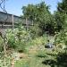 Rachel & Carissa\'s Organic garden