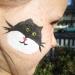 raven-cat