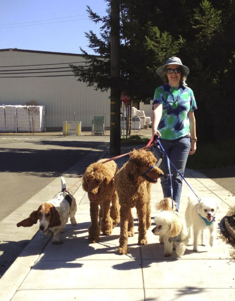 Another W. E. Dog walker