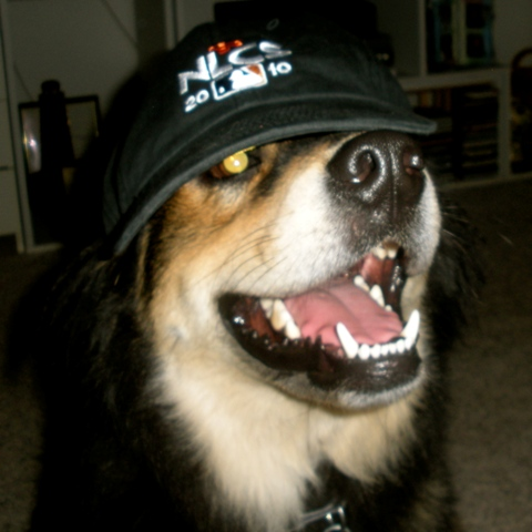 Harley and his Giants hat