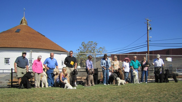 Group photo from Oct 2010 Poodle Party