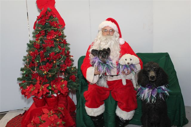 Cruella, Pookie and Koko poses with Santa