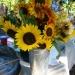 Flowers from Deb's garden