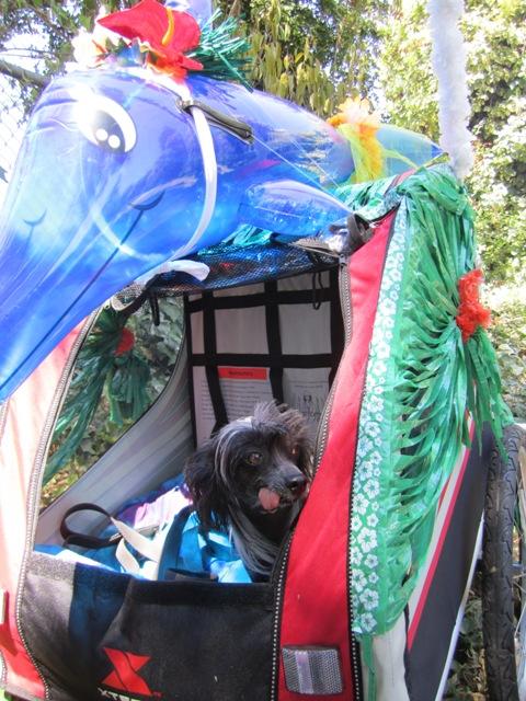 Cruella in her princess bike trailer