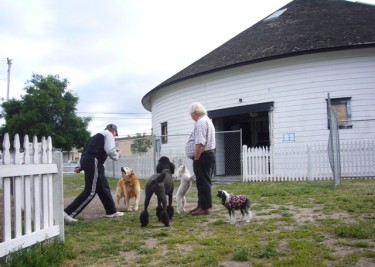 The exisiting Dog Park be reduced for Barn construction