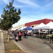 W. E. Farmers Market- Opening Day May 26th