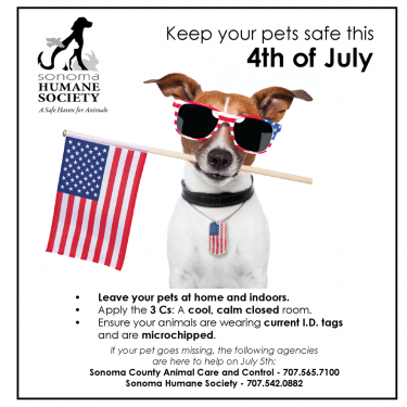 Keep you pets safe this 4th of July