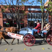 'Tis the Season- Carriage Rides, Package Thefts