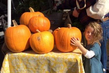 Pumpkinwb