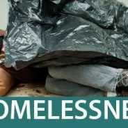 2 Meetings- Homeless Cleanup Program, Housing Action Plan